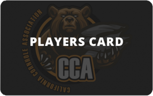 Players Card